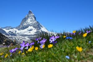 Alpine Photoshoot