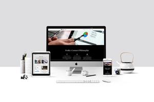 Prokic-Connect Web Design